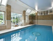 The elegant swimming pool