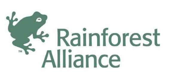 The Rainforest Foundation