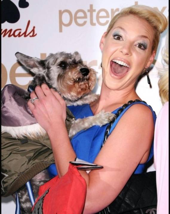Katherine Heigl's attended a charity event with her cute pet dog Romeo.