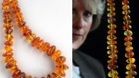 Amber necklace with insect fossils could fetch up to £10,000