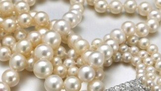 Pearls – The Most Expensive of the Lot!