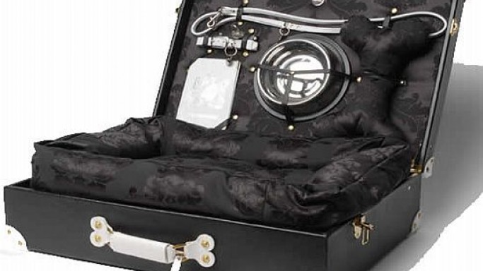 Global Gallivanter trunk lets your pets travel in style